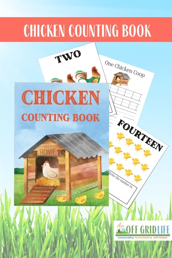 Chicken Counting Book