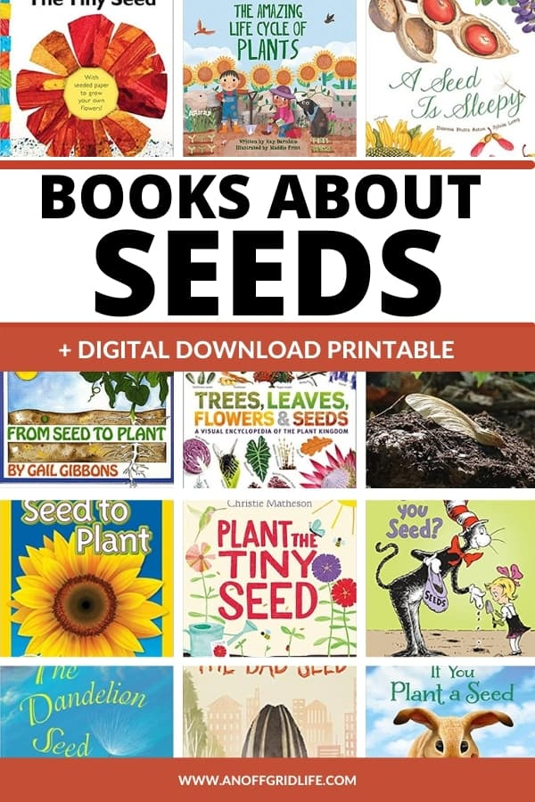 15 Best Books About Seeds for Kids