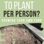 Text overlay How Much to Plant Per Person? Growing Your Own Food