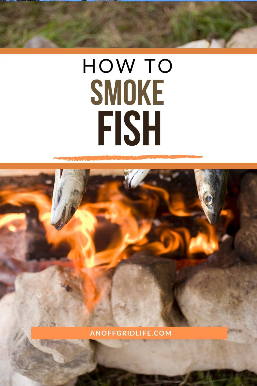 Fish smoking over a campfire