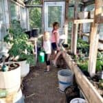 Homesteading & Homeschooling Families