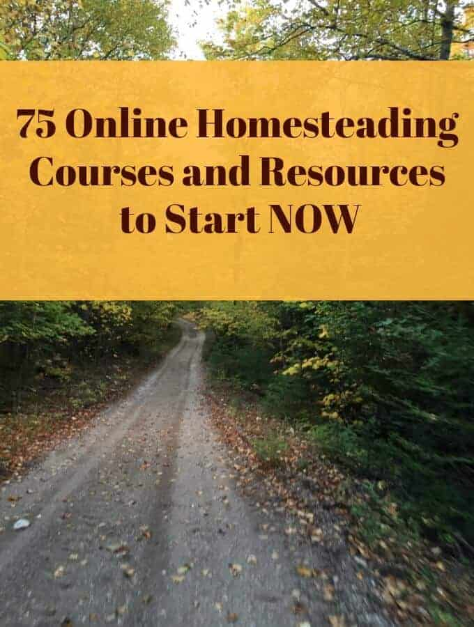 75 Online Homesteading Courses and Resources to Start Now