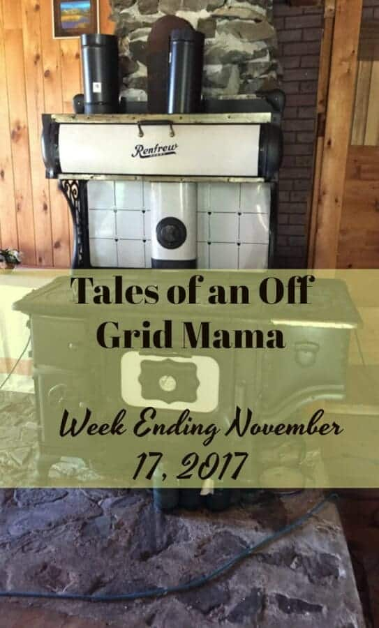 tales of an off grid mama
