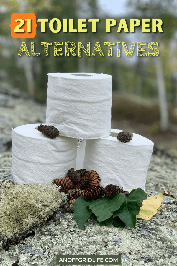 """three rolls of toilet paper on a rock with text overlay """"21 toilet paper alternatives"""""""