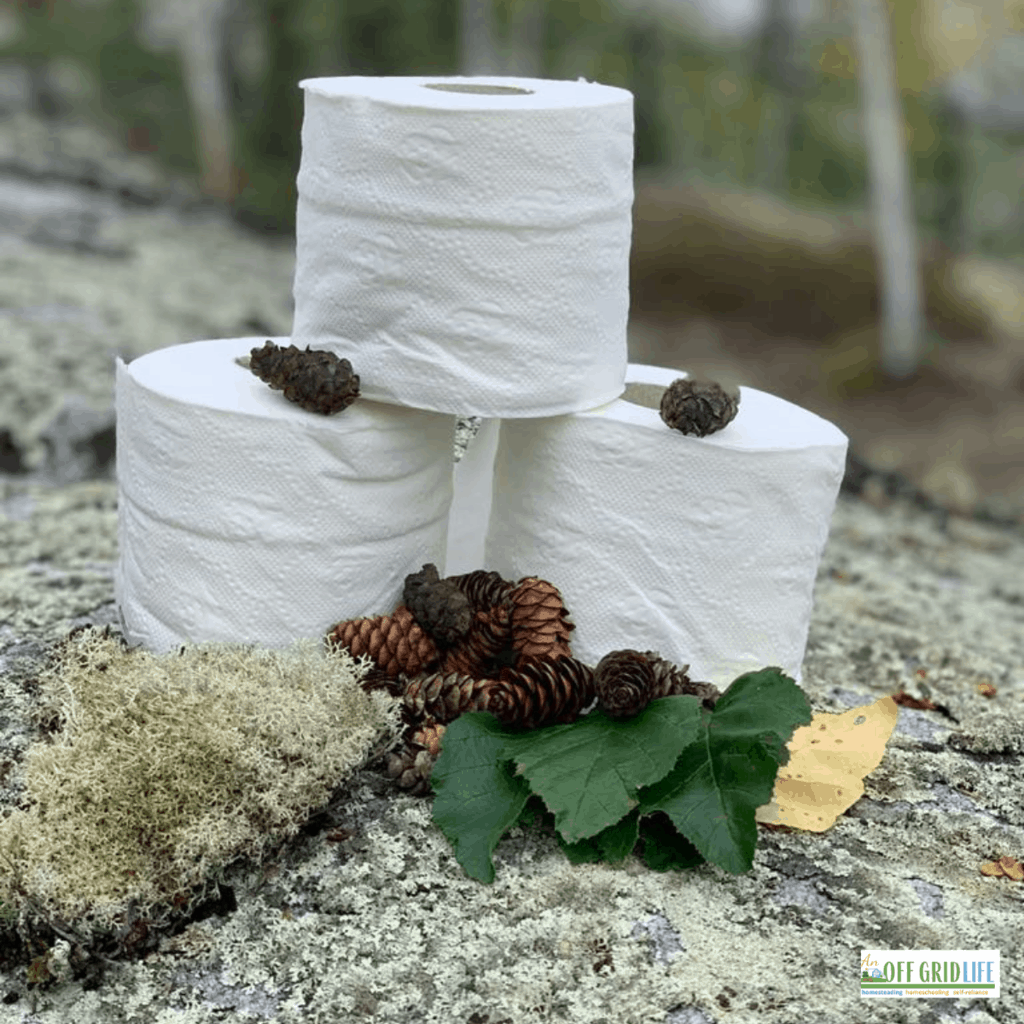 three rolls of toilet paper on a rock with pinecones, outdoors.