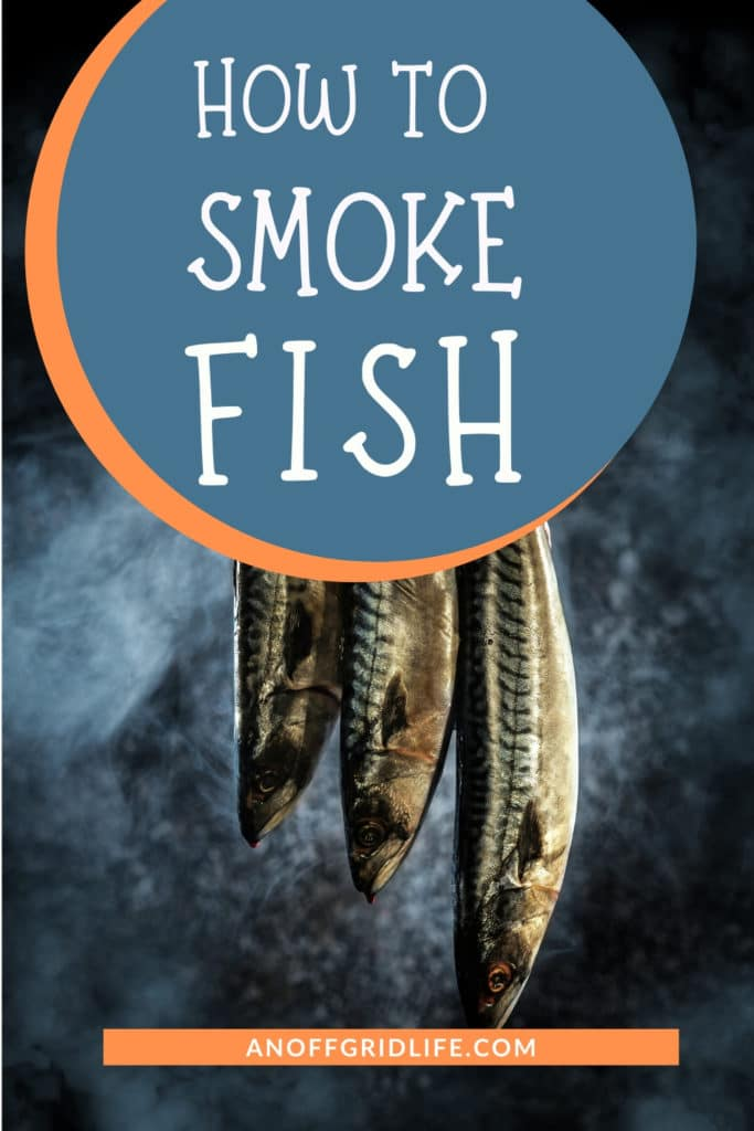 Three fish hanging over a smoky fire