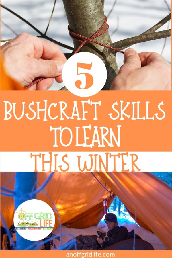 Bushcraft skills to learn this winter