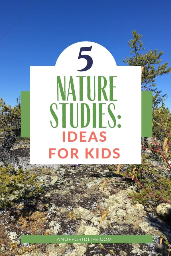 Kids outdoors doing nature studies in a boreal forest