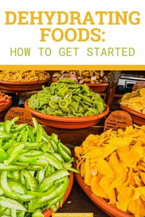 """a pinterest image of three wooden bowls with dehydrated fruit including papaya and pomelo. Text overlay """"dehydrating foods: how to get started"""""""