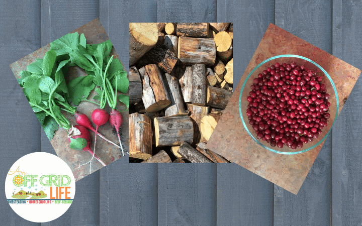 homegrown vegetables, handcut firewood, foraged cranberries on a wooden background