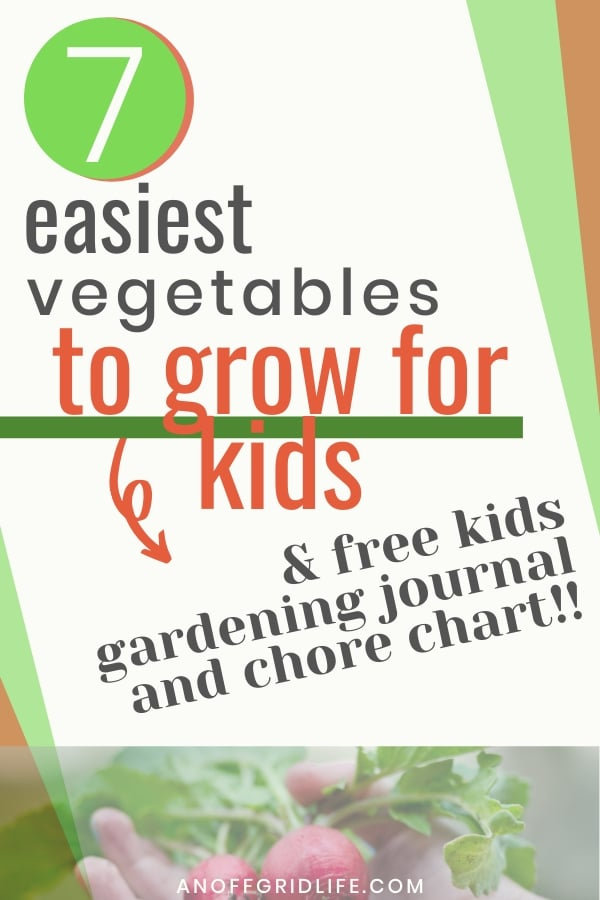 Text overlay 7 easiest vegetables to grow for kids