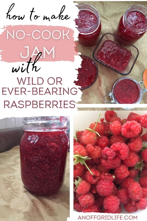 How to Make No-Cook Jam text overlay on collage of jam images