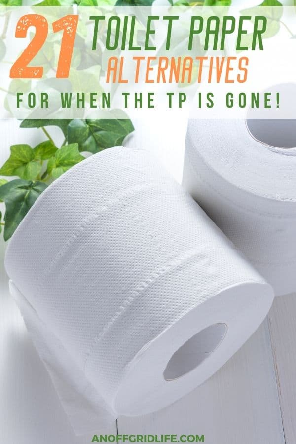 "a pinterest image of two rolls of toilet paper and some green overlay, with text overlay ""21 toilet paper alternatives for when the TP is gone"""