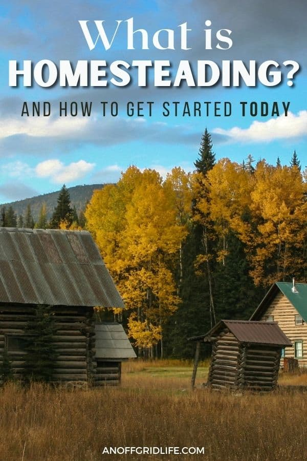 "text overlay ""what is homesteading"" on a picture of a log cabin and a barn with yellow leaved trees in the background."