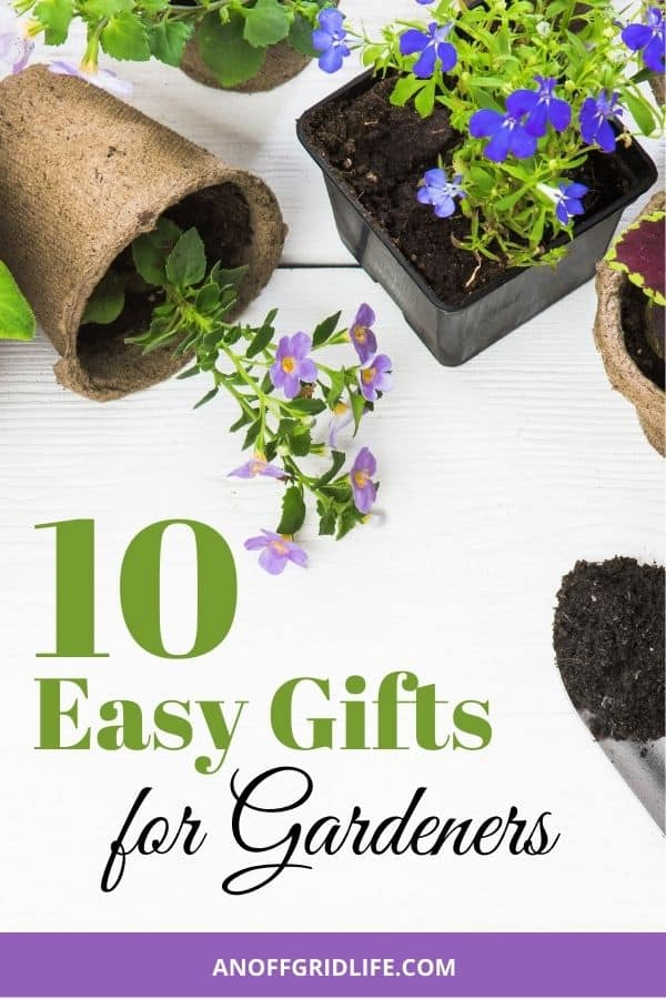 """text overlay """"10 easy gifts for gardeners"""" on an image of two trowels and 3 small pots with purple flowers and a white background."""