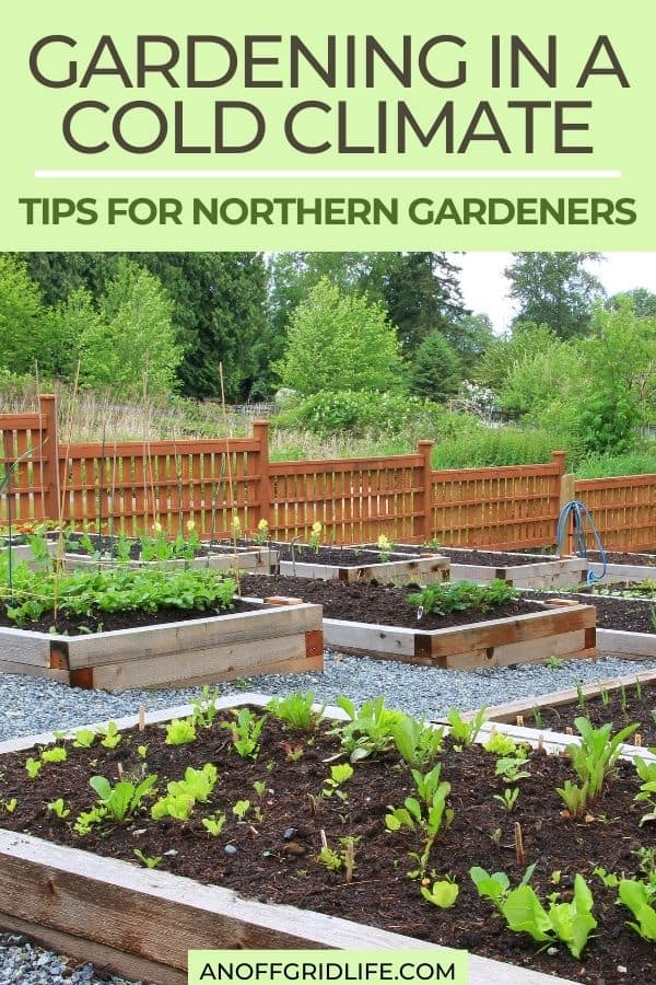 "a pinterest image of raised garden beds in the country with text overlay ""gardening in a cold climate: tips for northern gardeners"""