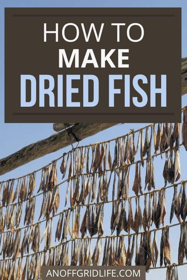 """text overlay """"how to make dried fish"""" over an image of hundreds of dried fish hanging on lines outdoors."""