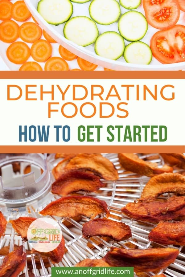 Dehydrating Foods: How to Get Started text overlay on dried apples on a food dehydrator tray