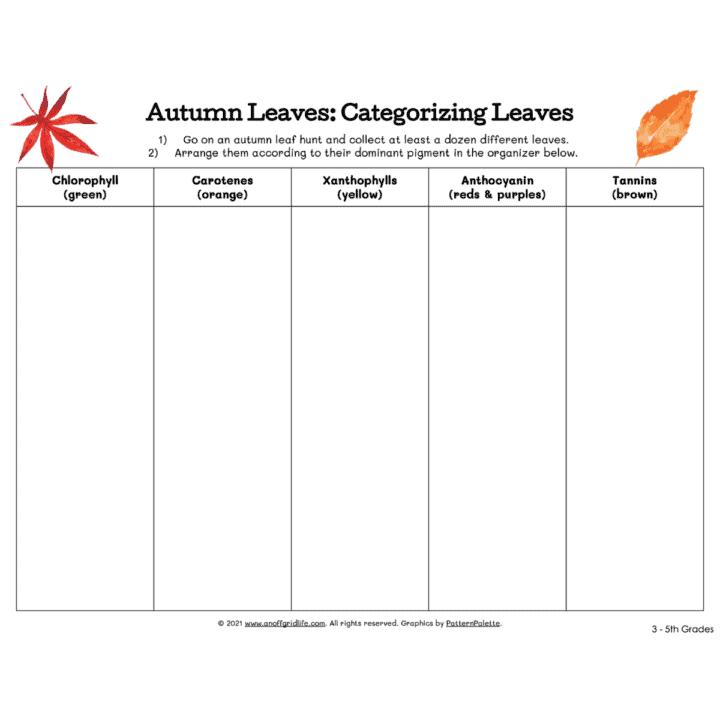 Autumn Leaves Categorizing Sheet