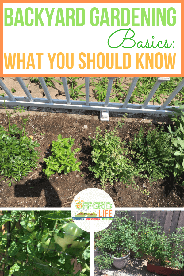 Backyard Gardening Basics To Learn Today #backyardgardening #gardeningforbeginners