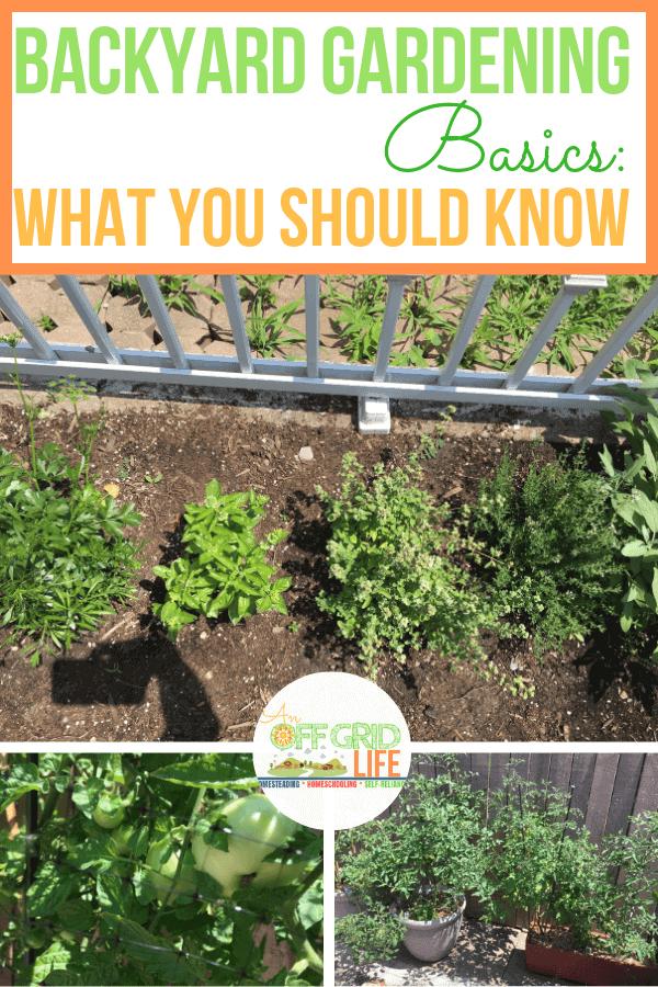 Backyard Gardening Basics To Learn Today #backyardgardening #gardeningforbeginners