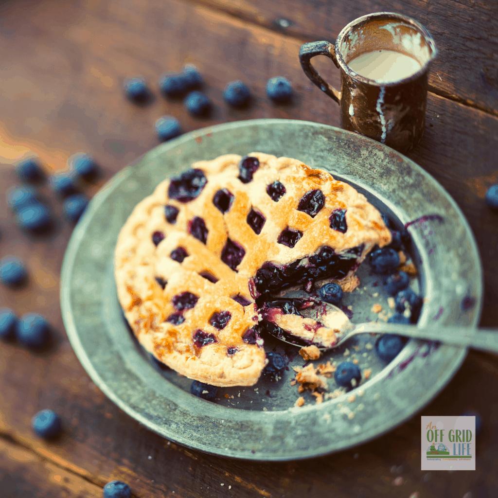 Best blueberry pie with lattice crust on top