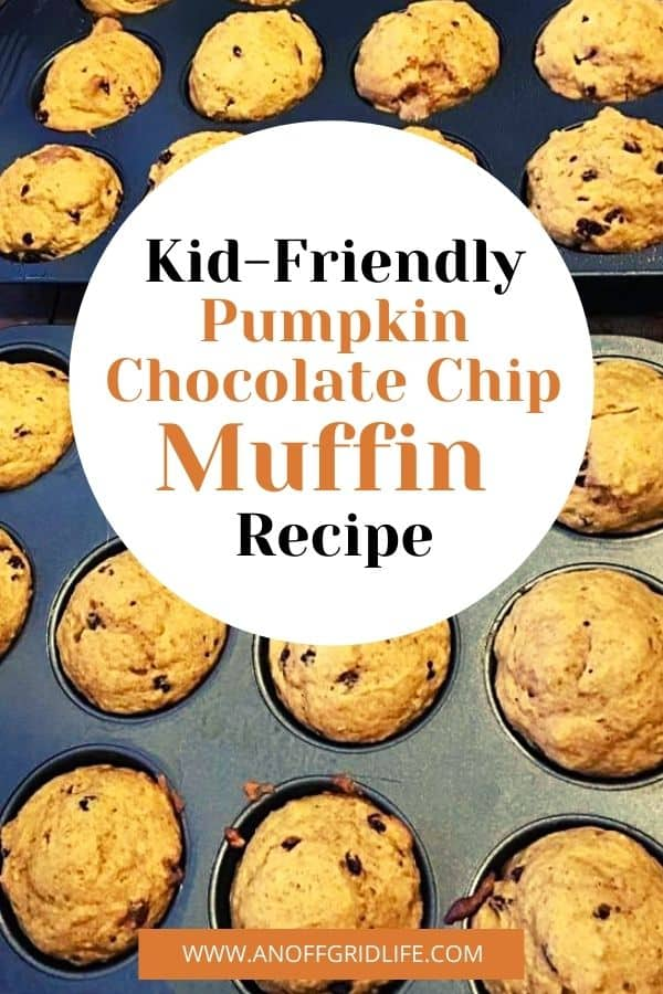 """a pinterest image of a muffin pan with text overlay """"kid-friendly pumpkin chocolate chip muffin recipe"""""""