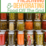 Canning Preserving and Dehydrating Food Off The Grid - TIps to Know