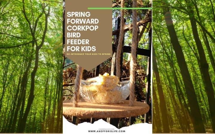 DIY Bird Feeder For Kids to Make