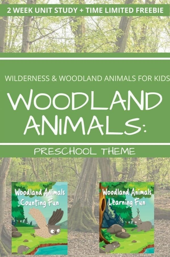 Woodland Animals Preschool Theme Unit Study text overlay with images of unit study covers on background of woodlands