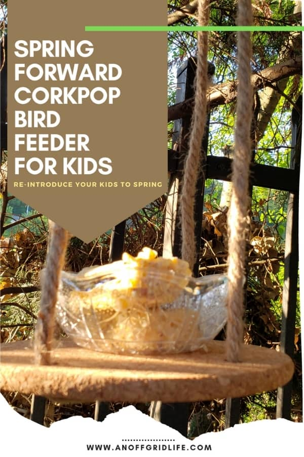 DIY Bird Feeder For Kids to Make