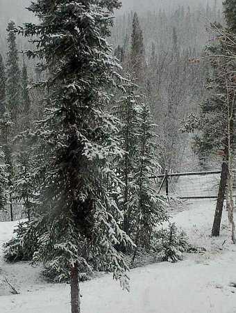 Living off the grid in winter in a really cold climate takes some planning. Here's how we prepare. #livingoffthegrid #prep #cabinlife #offgridlife