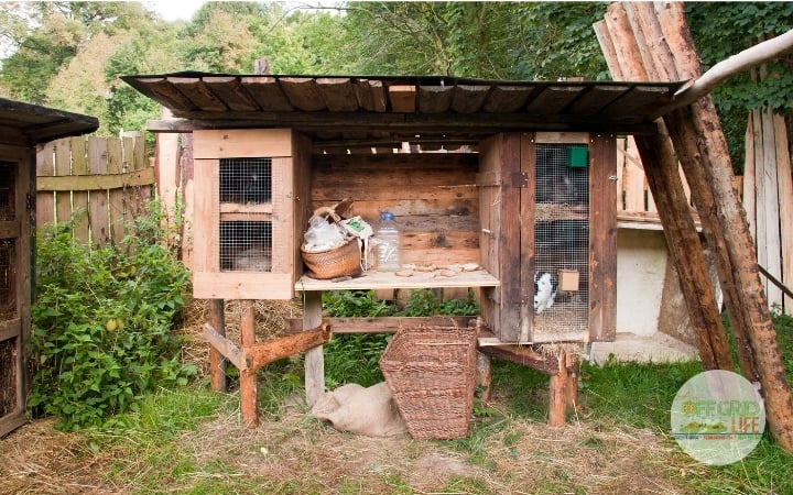 Raised rabbit hutch outdoors