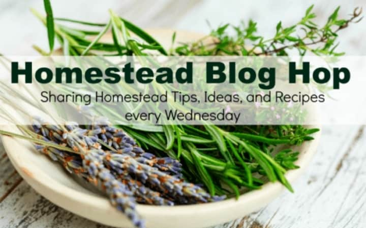 Homestead Blog Hop text overlay on bowl of wild lavendar