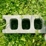 Garden Cinder block on grass with wildflowers