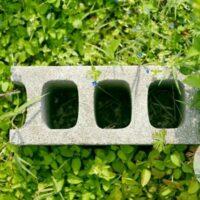 How to Build a Cinder Block Garden