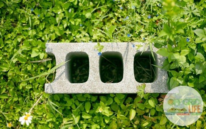 Garden Cinder block on grass with wildflowers
