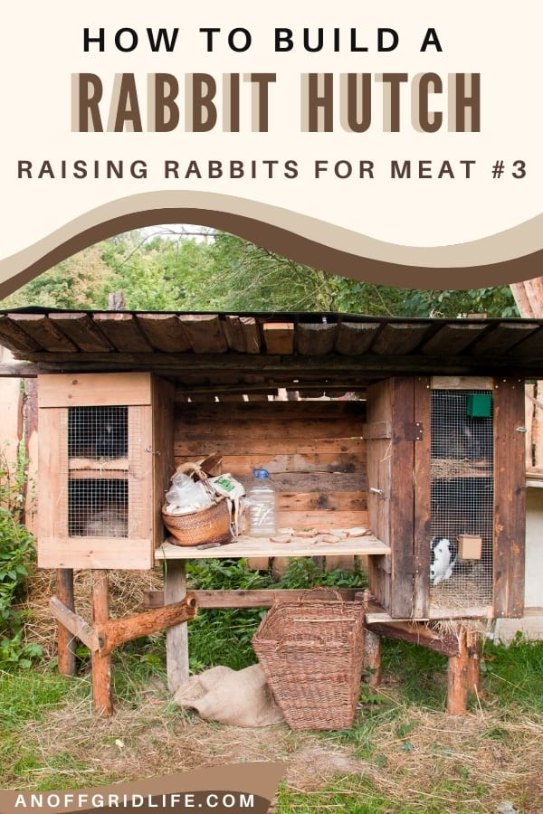 How to Build a Rabbit Hutch: Raising Rabbits for Meat Part 3 Text Overlay on image of outdoor raised rabbit hutch