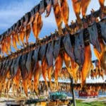 Fish drying on racks outside