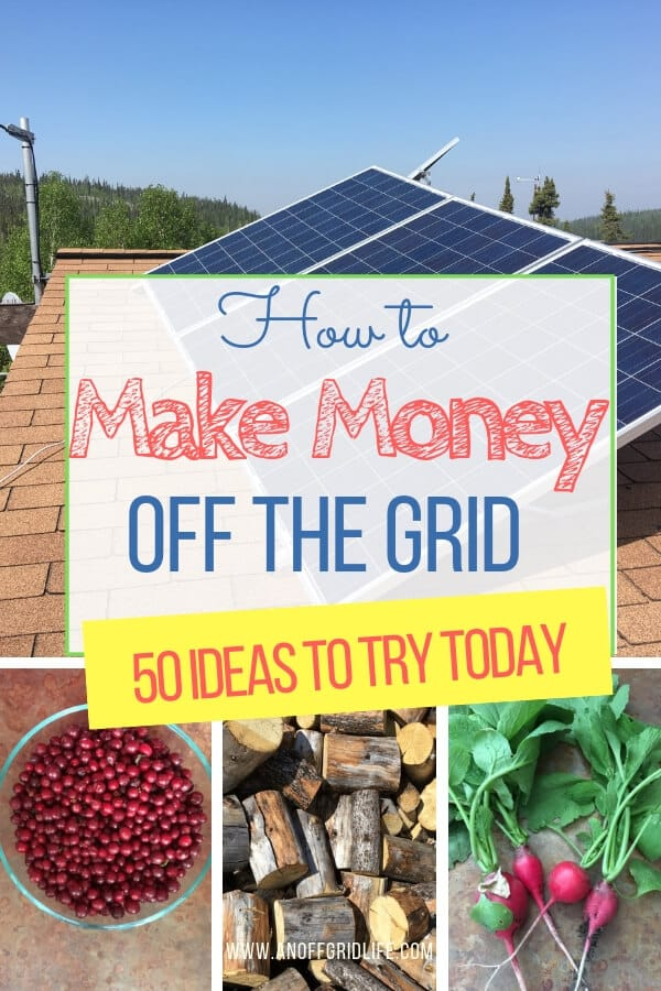 How to Make Money Off The Grid: 50 Ideas to Try Today