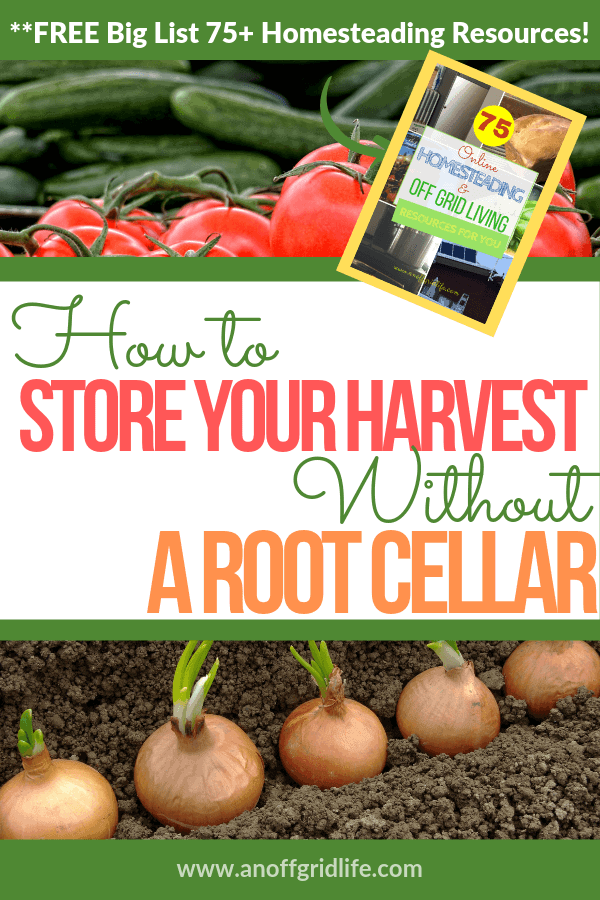 How to Store Your Harvest Without a Root Cellar text overlay on images of tomatoes, cucumbers and onions