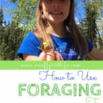 How to Use Foraging to Teach Your Kids