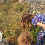 Two children foraging for wild raspberries in a field
