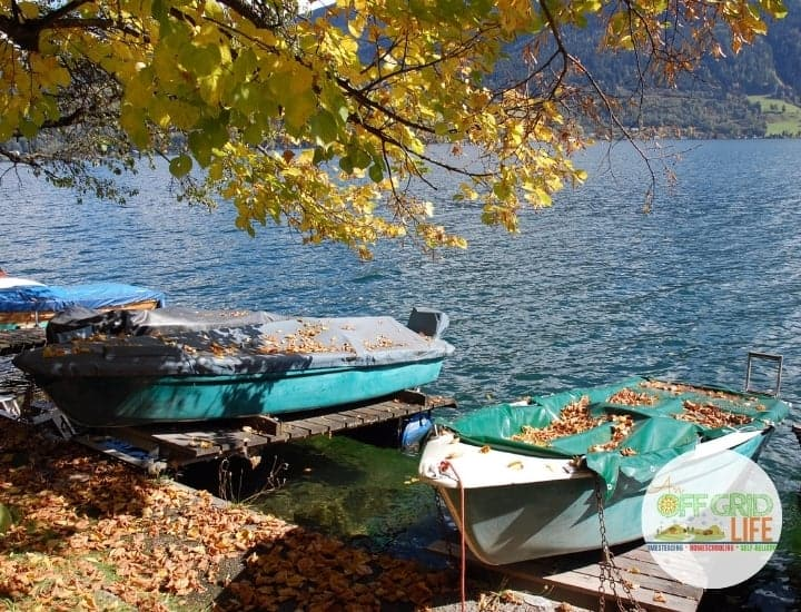 Boats pulled up to shore in autumn
