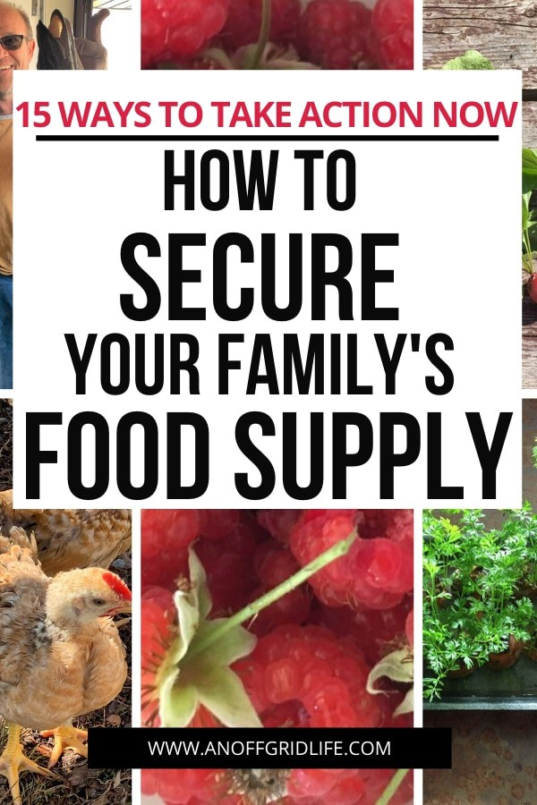 Text overlay of How to Secure Your Family's Food Supply: 15 Actions to Take Now on a collage including meat chicken, man holding a fresh fish, homegrown radishes, raspberries, and herbs and home-baked cornbread.