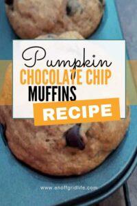 Pumpkin Chocolate Chip Muffin Recipe #pumpkinchocolatechipmuffins #pumpkinmuffinsrecipe #healthypumpkinmuffinrecipe