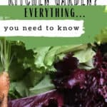 What is a Kitchen garden text overlay on image of fresh vegetables from a garden