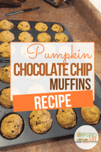 This kid-friendly Pumpkin Chocolate Chip Muffins Recipe gives your kids a healthy vegetable serving and a nutritious snack or breakfast treat. #pumpkin #pumpkinrecipes #muffins #pumpkinchocolatechipmuffinsrecipe