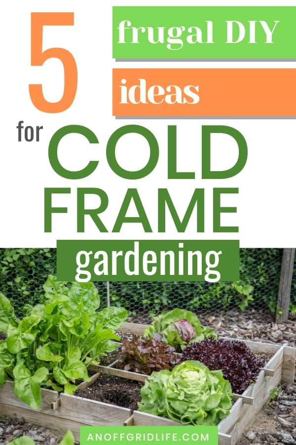 Text overlay: 5 frugal DIY ideas for cold frame gardening