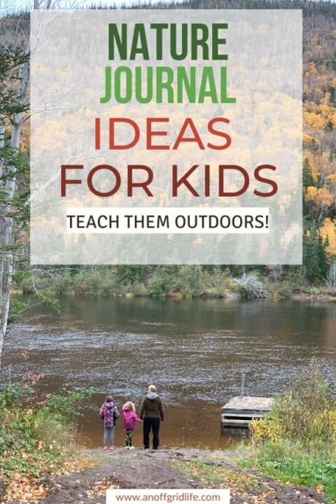Looking for unique nature journal ideas for kids? Use these alongside your regular homeschool or public school elementary science curriculum.